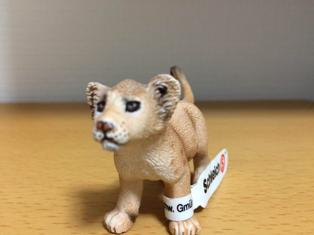 lion-mae