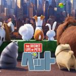 お正月に家族で楽しむならユニバーサルスタジオの映画「ペット」が面白くてオススメ!!