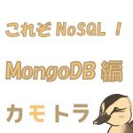 リモートのmongodbへ接続する
