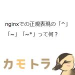 nginxでの正規表現の「^」「~」「~*」って何?