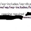 【wordpress】「No such file or directory」が表示されてアクセスできない!