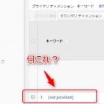 Googleアナリティクスの「not provided」って何?