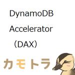 DynamoDB Accelerator(DAX)